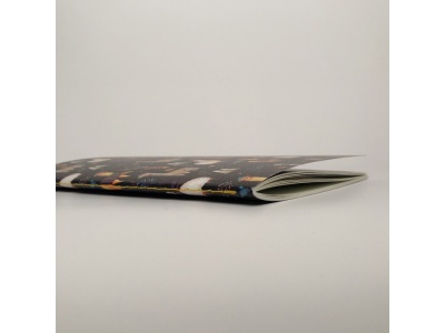 Тетрадь А5 на сшивке « Lamas» 24 страницы