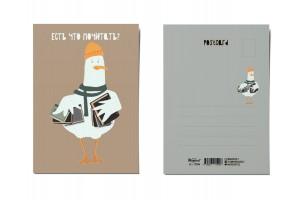 Почтовая открытка «Есть что почитать?», Питерские чайки