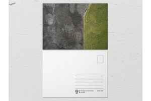 Открытка «Краски на стенах», серо зеленая стена