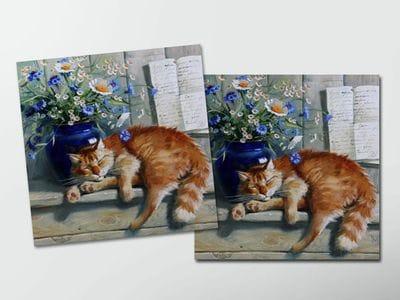 Открытка - постер «Рыжий кот» спит