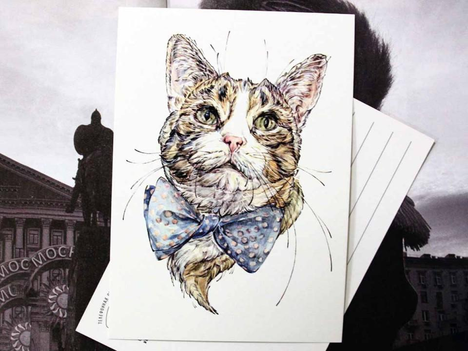 """Открытка """"Красавчик"""" кот"""