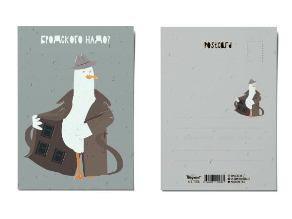 Почтовая открытка «Томик Бродского?», Питерские чайки
