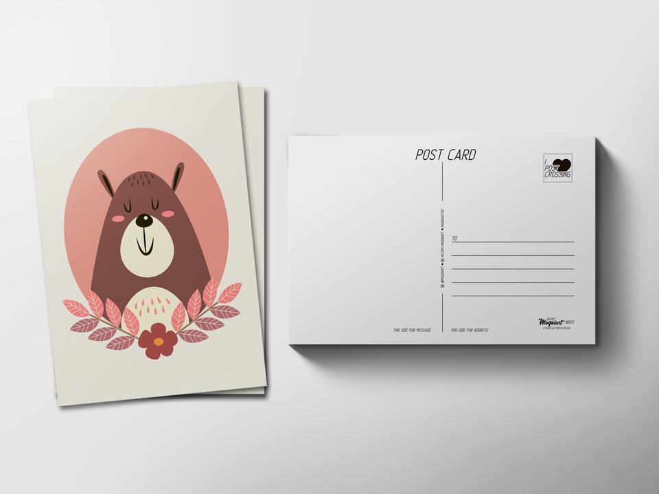 Почтовая открытка «Ушастый медведь» для посткроссинга