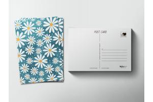 Почтовая открытка «Ромашки»