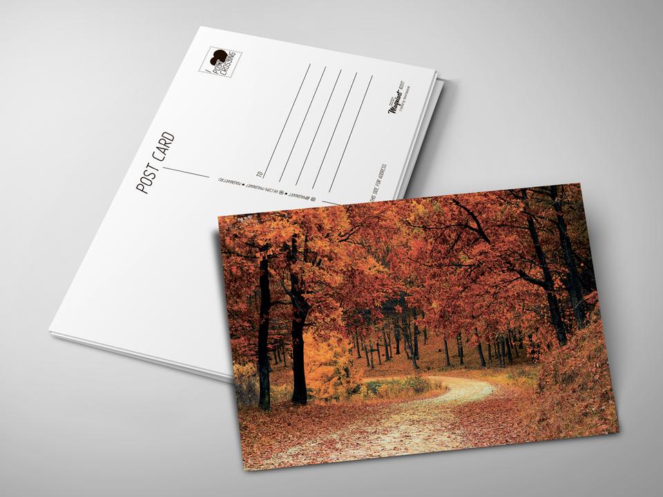 Почтовая открытка «Осень в парке» для посткроссинга