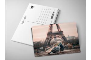 Почтовая открытка «Голуби на фоне Эйфелевой башни»