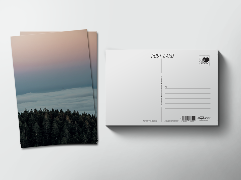 Почтовая открытка из коллекции для посткроссинга «Закат над лесом»