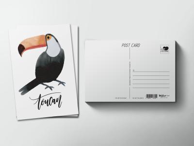 Почтовая открытка «Птица Тукан»