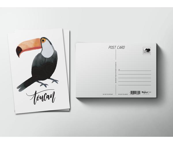 Открытка почтовая  «Птица Тукан» для посткроссинга