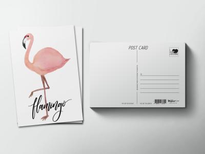 Почтовая открытка «Птица Фламинго»