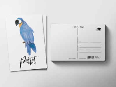 Почтовая открытка «Птица Попугай»