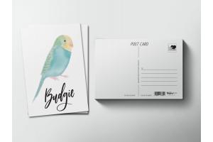 Почтовая открытка «Птица Волнистый попугай»