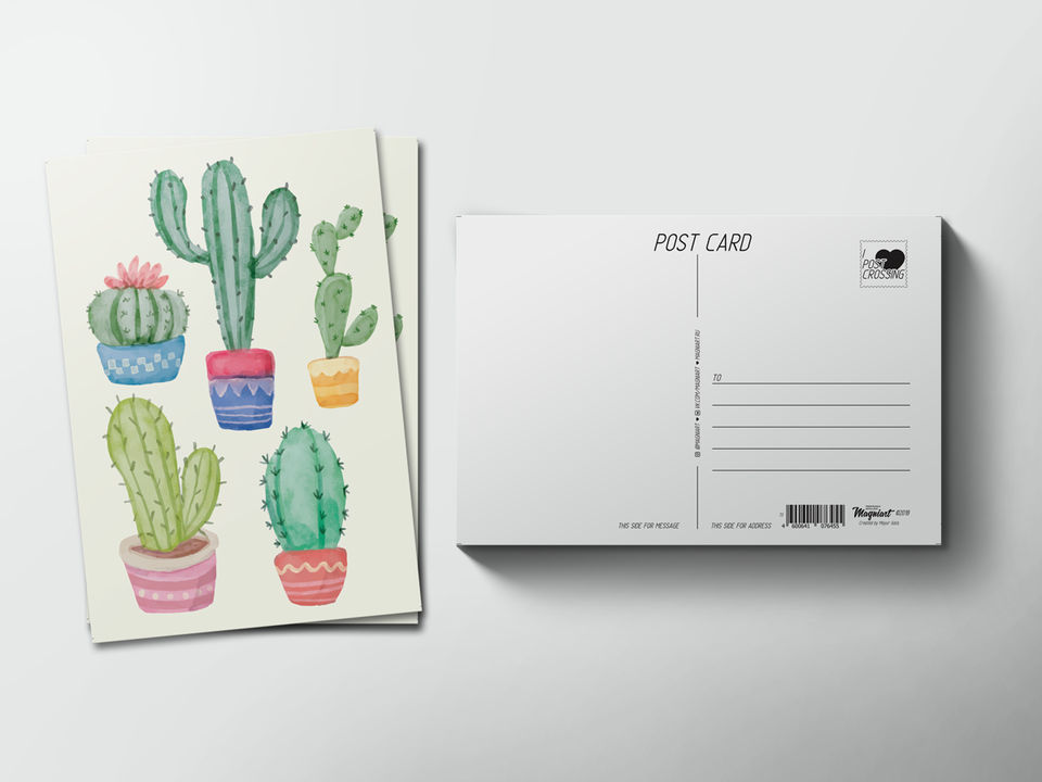 Почтовая открытка из коллекции для посткроссинга «пять кактусов»