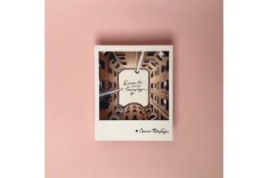 Фото открытка «Бросай всё и лети в Петербург»